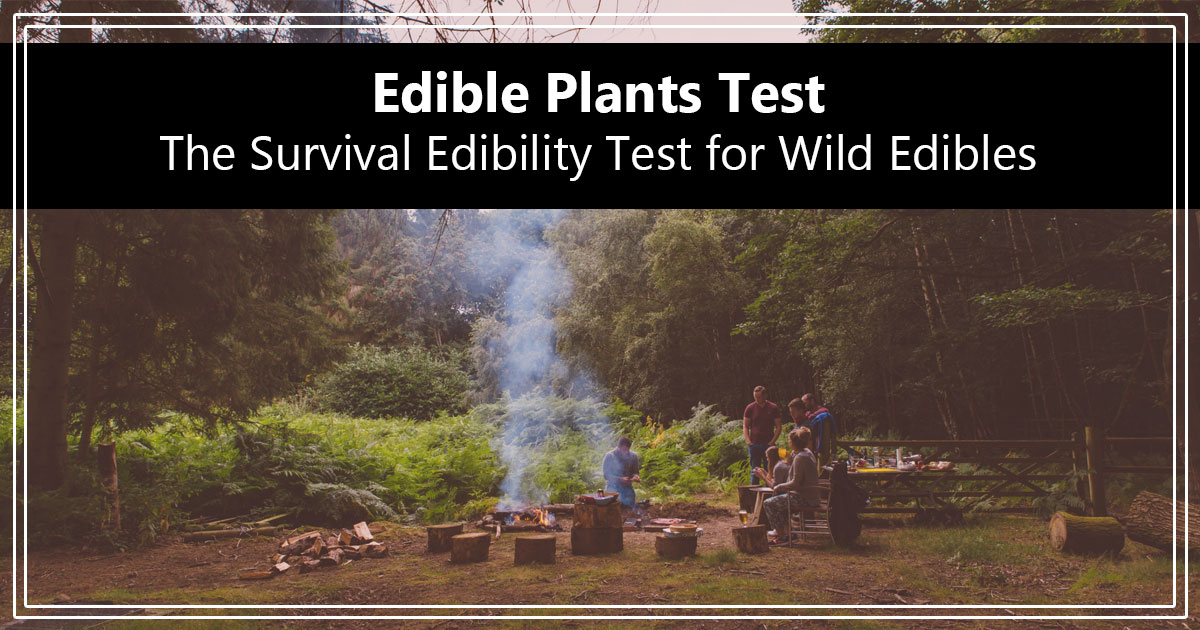 Edible Plants Test - The Survival Edibility Test for Wild Edibles